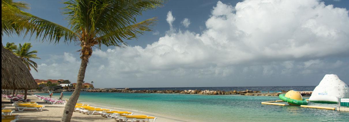 Liegen und Palmen am Lions Dive Beach
